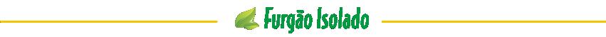 furgao-isolado